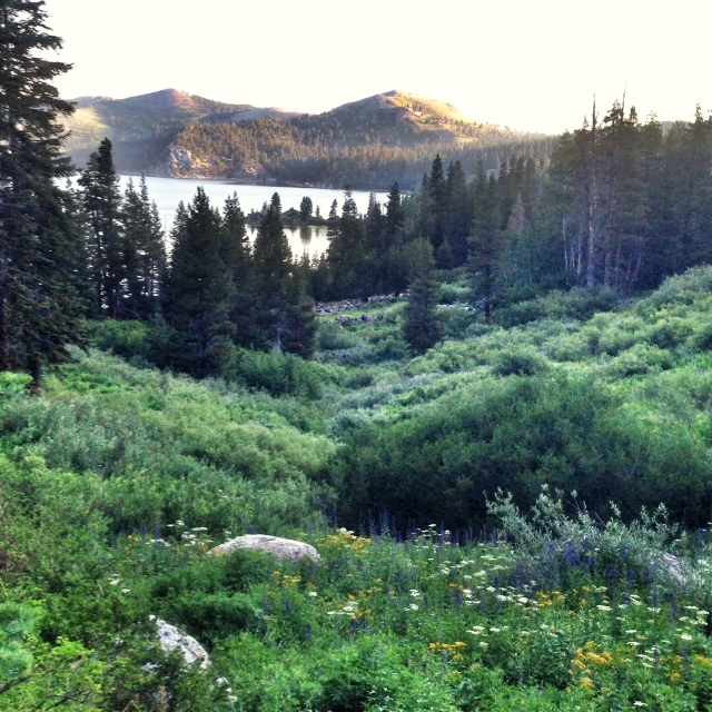 First view of Marlette Lake