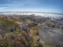 walking down to the tide pooling spot