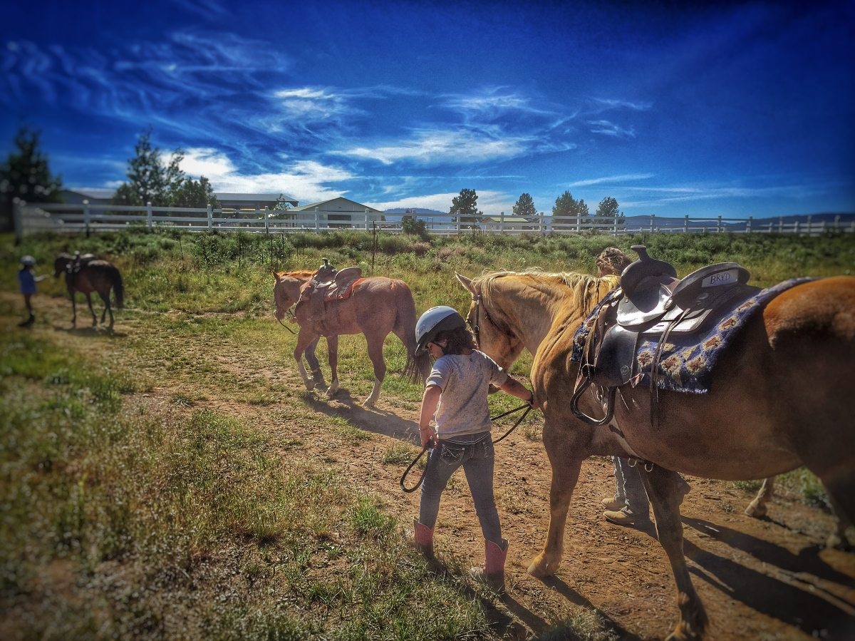 A Week at Horse Camp | jp chronicles