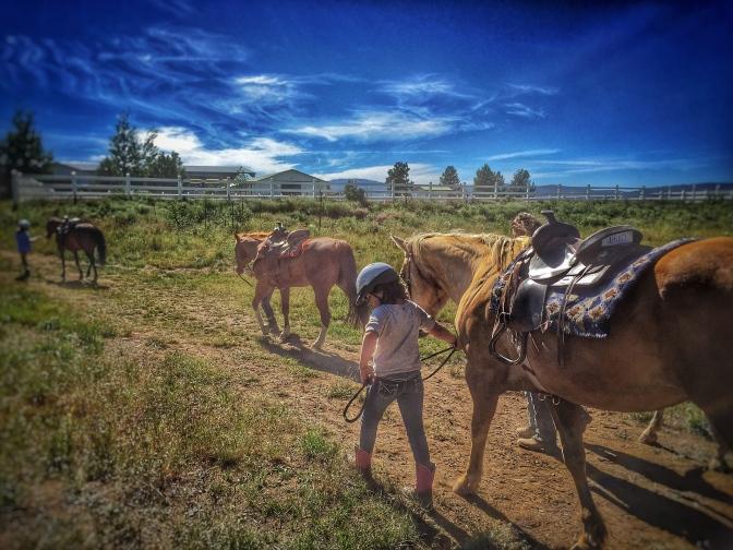 A Week at Horse Camp