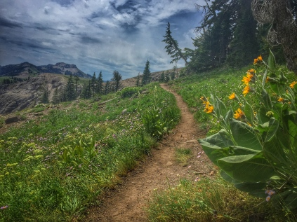 just below Mt. Lincoln, on the PCT