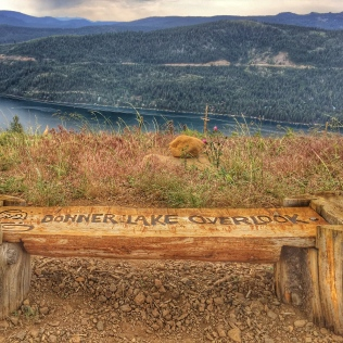 Donner Lake Overlook