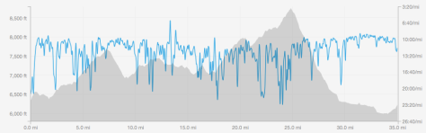 Elevation profile from our run
