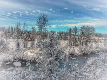 Christmas Day '16 - Truckee River