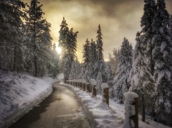 Jan '17 - path between downtown and Tahoe Donner